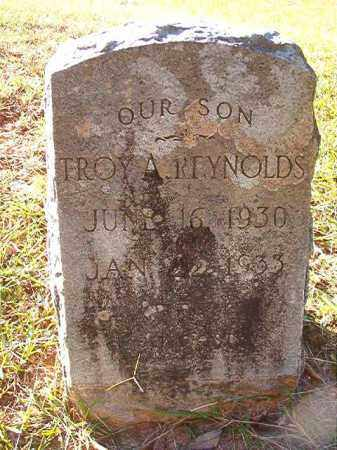 REYNOLDS, TROY A - Dallas County, Arkansas | TROY A REYNOLDS - Arkansas Gravestone Photos