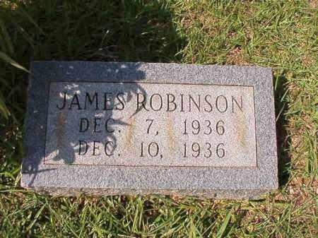 ROBINSON, JAMES - Dallas County, Arkansas | JAMES ROBINSON - Arkansas Gravestone Photos