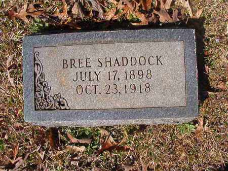 SHADDOCK, BREE - Dallas County, Arkansas | BREE SHADDOCK - Arkansas Gravestone Photos