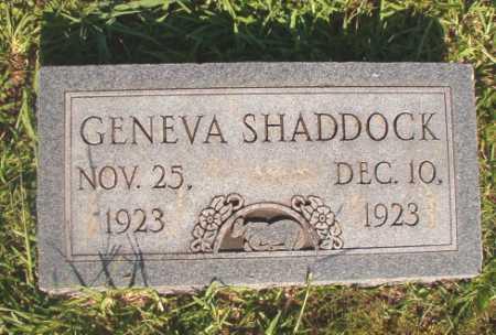 SHADDOCK, GENEVA - Dallas County, Arkansas | GENEVA SHADDOCK - Arkansas Gravestone Photos