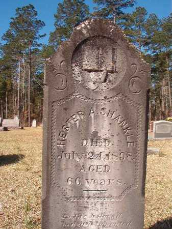 SHANKLE, HESTER A - Dallas County, Arkansas   HESTER A SHANKLE - Arkansas Gravestone Photos