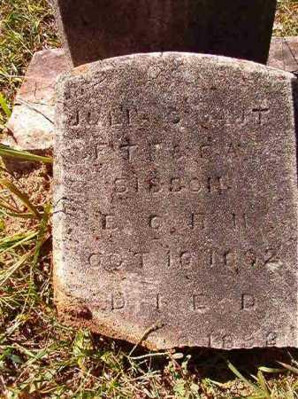 SISSON, JULIA C - Dallas County, Arkansas   JULIA C SISSON - Arkansas Gravestone Photos