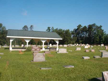*SPARKMAN CEMETERY, OVERVIEW - Dallas County, Arkansas   OVERVIEW *SPARKMAN CEMETERY - Arkansas Gravestone Photos