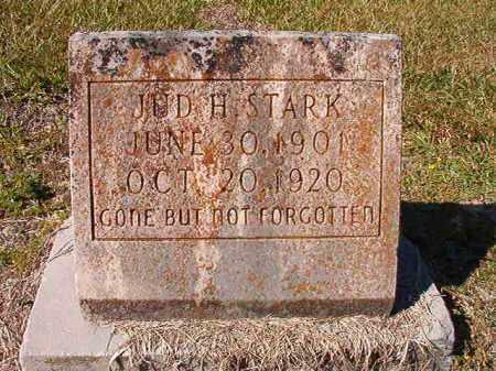 STARK, JUD H - Dallas County, Arkansas | JUD H STARK - Arkansas Gravestone Photos