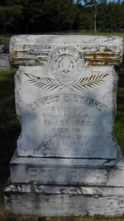 STARKS, ERNEST C - Dallas County, Arkansas | ERNEST C STARKS - Arkansas Gravestone Photos