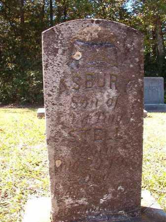 STELL, ASBURY - Dallas County, Arkansas | ASBURY STELL - Arkansas Gravestone Photos