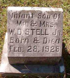 STELL, INFANT SON - Dallas County, Arkansas | INFANT SON STELL - Arkansas Gravestone Photos