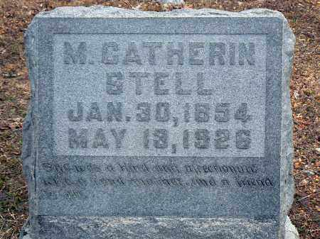 GREEN STELL, MARY CATHERIN - Dallas County, Arkansas | MARY CATHERIN GREEN STELL - Arkansas Gravestone Photos
