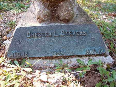 STEVENS, CHESTER L - Dallas County, Arkansas | CHESTER L STEVENS - Arkansas Gravestone Photos