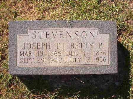 STEVENSON, BETTY P - Dallas County, Arkansas | BETTY P STEVENSON - Arkansas Gravestone Photos