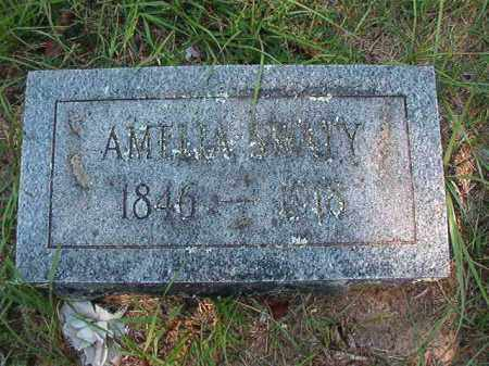 SWATY, AMELIA - Dallas County, Arkansas | AMELIA SWATY - Arkansas Gravestone Photos