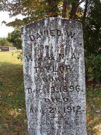 TAYLOR, DAVIED W - Dallas County, Arkansas | DAVIED W TAYLOR - Arkansas Gravestone Photos