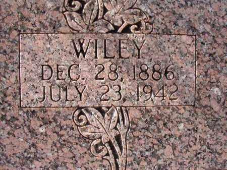 TOWNLEY, WILEY - Dallas County, Arkansas | WILEY TOWNLEY - Arkansas Gravestone Photos