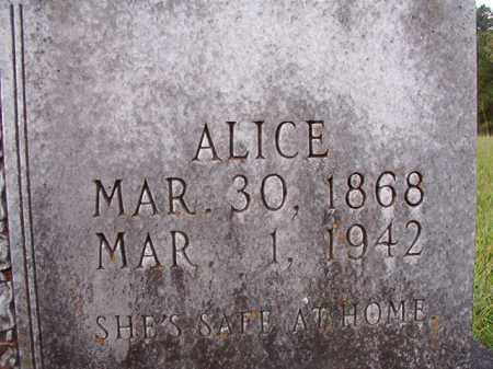 TURNER, ALICE - Dallas County, Arkansas | ALICE TURNER - Arkansas Gravestone Photos