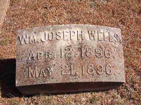 WELLS, WM JOSEPH - Dallas County, Arkansas | WM JOSEPH WELLS - Arkansas Gravestone Photos