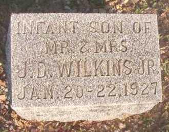 WILKINS, INFANT SON - Dallas County, Arkansas   INFANT SON WILKINS - Arkansas Gravestone Photos