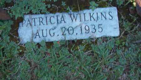 WILKINS, PATRICIA - Dallas County, Arkansas | PATRICIA WILKINS - Arkansas Gravestone Photos