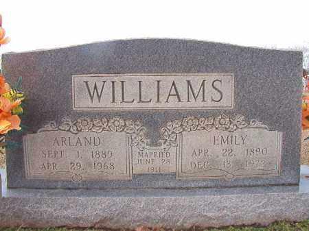 WILLIAMS, EMILY - Dallas County, Arkansas | EMILY WILLIAMS - Arkansas Gravestone Photos