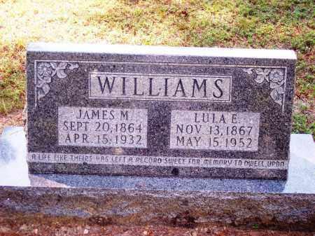 WILLIAMS, LULA E - Dallas County, Arkansas | LULA E WILLIAMS - Arkansas Gravestone Photos