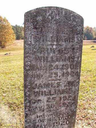 WILLIAMS, JAMES W - Dallas County, Arkansas | JAMES W WILLIAMS - Arkansas Gravestone Photos
