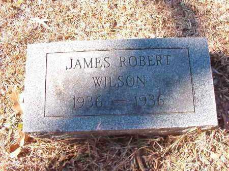 WILSON, JAMES ROBERT - Dallas County, Arkansas | JAMES ROBERT WILSON - Arkansas Gravestone Photos