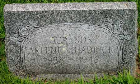 SHADRICK, ARLENE - Desha County, Arkansas | ARLENE SHADRICK - Arkansas Gravestone Photos