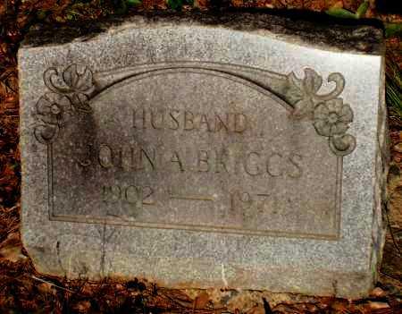 BRIGGS, JOHN A - Drew County, Arkansas | JOHN A BRIGGS - Arkansas Gravestone Photos