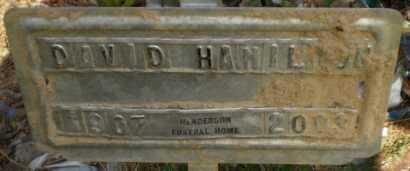 HAMILTON, DAVID - Drew County, Arkansas | DAVID HAMILTON - Arkansas Gravestone Photos