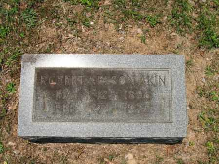 AKIN, ROBERT NELSON - Drew County, Arkansas | ROBERT NELSON AKIN - Arkansas Gravestone Photos
