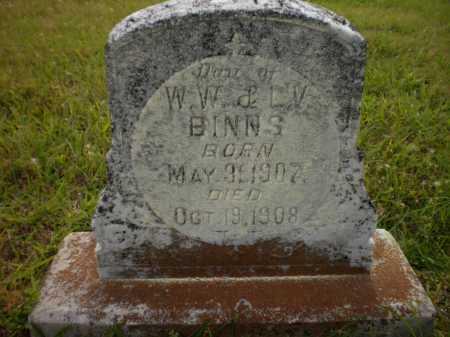 BINNS, DAUGHTER - Drew County, Arkansas   DAUGHTER BINNS - Arkansas Gravestone Photos