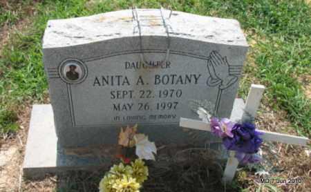 BOTANY, ANITA A - Drew County, Arkansas | ANITA A BOTANY - Arkansas Gravestone Photos