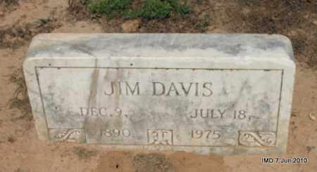DAVIS, JIM - Drew County, Arkansas | JIM DAVIS - Arkansas Gravestone Photos