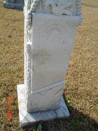 PEACOCK, ASMOND LOVIC - Drew County, Arkansas | ASMOND LOVIC PEACOCK - Arkansas Gravestone Photos