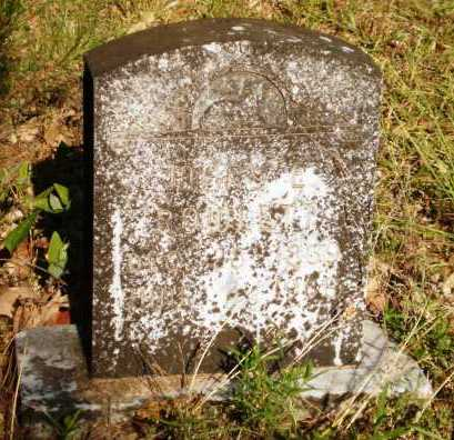 ROWLETT, MARY E - Drew County, Arkansas | MARY E ROWLETT - Arkansas Gravestone Photos