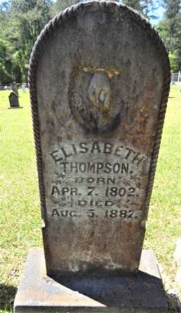 COPELAND THOMPSON, ELIZABETH - Drew County, Arkansas | ELIZABETH COPELAND THOMPSON - Arkansas Gravestone Photos