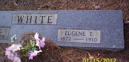 WHITE, EUGENE T - Drew County, Arkansas | EUGENE T WHITE - Arkansas Gravestone Photos