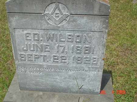 WILSON, DAVID EDWARD - Drew County, Arkansas | DAVID EDWARD WILSON - Arkansas Gravestone Photos