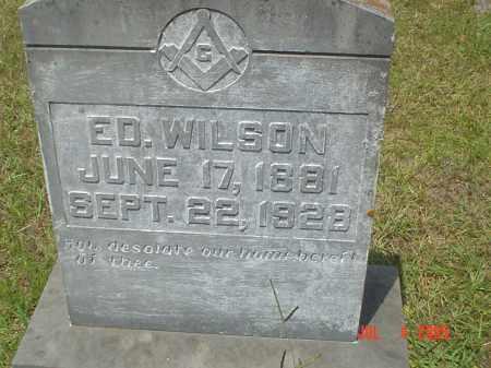 WILSON, DAVID EDWARD - Drew County, Arkansas | DAVID EDWARD WILSON - Arkansas Gravestone Photos