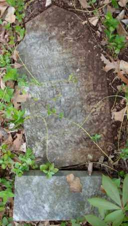 AGEE, FANNIE - Faulkner County, Arkansas | FANNIE AGEE - Arkansas Gravestone Photos