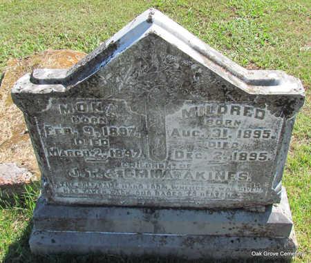 AKINES, MONA - Faulkner County, Arkansas | MONA AKINES - Arkansas Gravestone Photos