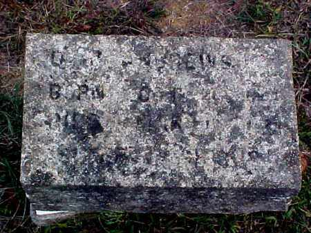 ANDREWS, DAVID JACKSON - Faulkner County, Arkansas | DAVID JACKSON ANDREWS - Arkansas Gravestone Photos