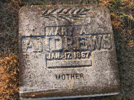 ANDREWS, MARY A. - Faulkner County, Arkansas | MARY A. ANDREWS - Arkansas Gravestone Photos