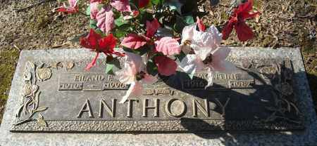 ANTHONY, MONTINE - Faulkner County, Arkansas | MONTINE ANTHONY - Arkansas Gravestone Photos