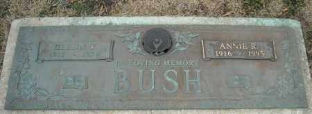 BUSH, ANNIE R. - Faulkner County, Arkansas | ANNIE R. BUSH - Arkansas Gravestone Photos
