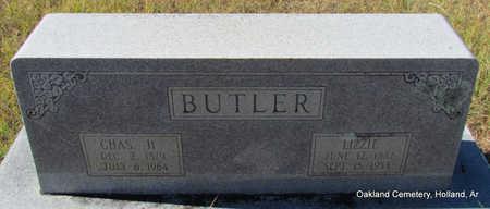 BUTLER, CHARLES HOUSTON - Faulkner County, Arkansas | CHARLES HOUSTON BUTLER - Arkansas Gravestone Photos