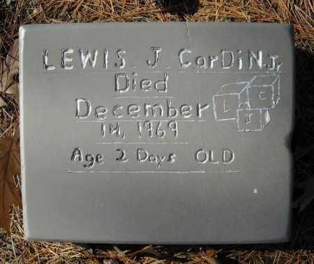 CARDIN, JR., LEWIS J. - Faulkner County, Arkansas | LEWIS J. CARDIN, JR. - Arkansas Gravestone Photos