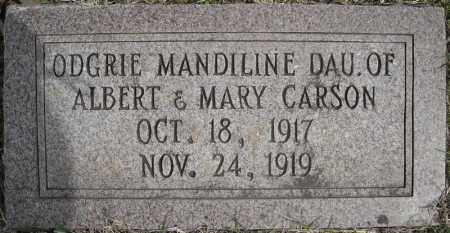 CARSON, ODGRIE MANDILINE - Faulkner County, Arkansas   ODGRIE MANDILINE CARSON - Arkansas Gravestone Photos