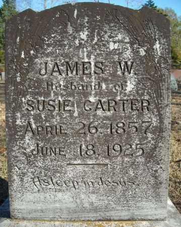 CARTER, JAMES W. - Faulkner County, Arkansas | JAMES W. CARTER - Arkansas Gravestone Photos