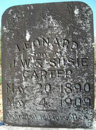CARTER, LEORNARD - Faulkner County, Arkansas | LEORNARD CARTER - Arkansas Gravestone Photos