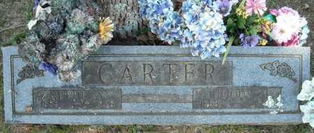 CARTER, JULIOUS H. - Faulkner County, Arkansas | JULIOUS H. CARTER - Arkansas Gravestone Photos